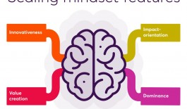 Scaling mindset features